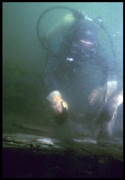 Vue sous-marine d'un plongeur effectuant le prélèvement de la carène(fouille M. L'Hour/Drassm, E. Veyrat/Drassm).