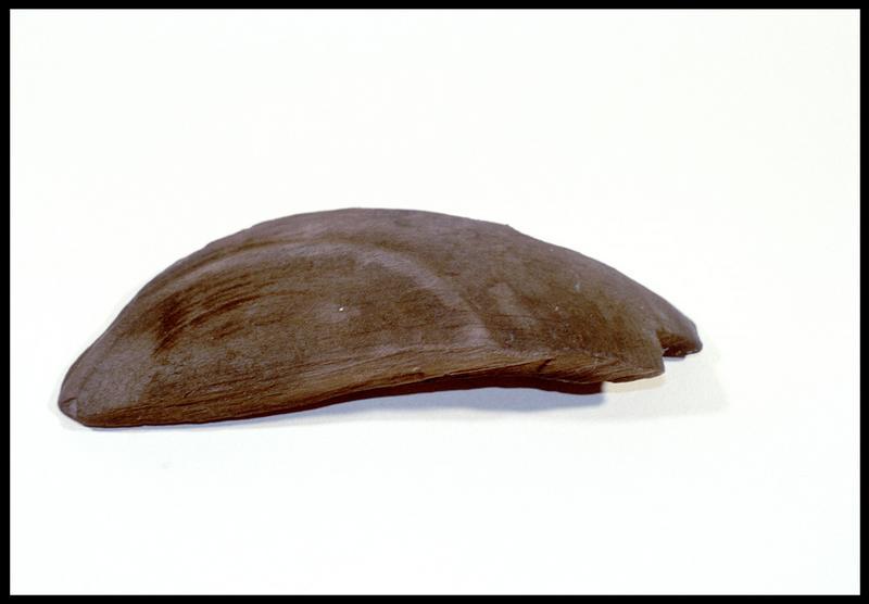 Vue d'un fragment de poulie en bois (fouille M. L'Hour/Drassm, E. Veyrat/Drassm).