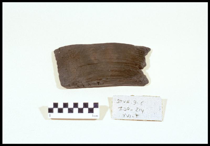 Vue d'un fragment d'élément de bois (fouille M. L'Hour/Drassm, E. Veyrat/Drassm).