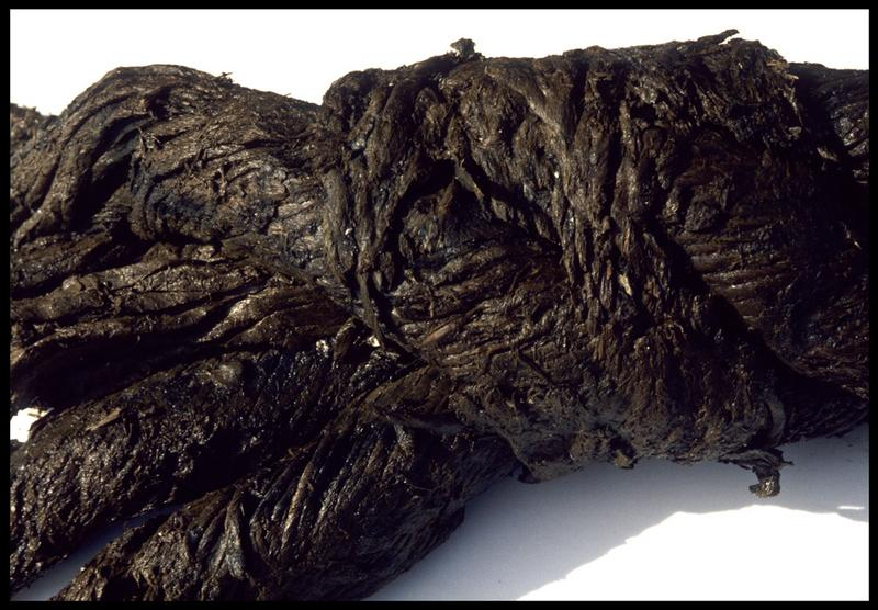 Vue de détail des tores d'un cordage (fouille M. L'Hour/Drassm, E. Veyrat/Drassm).