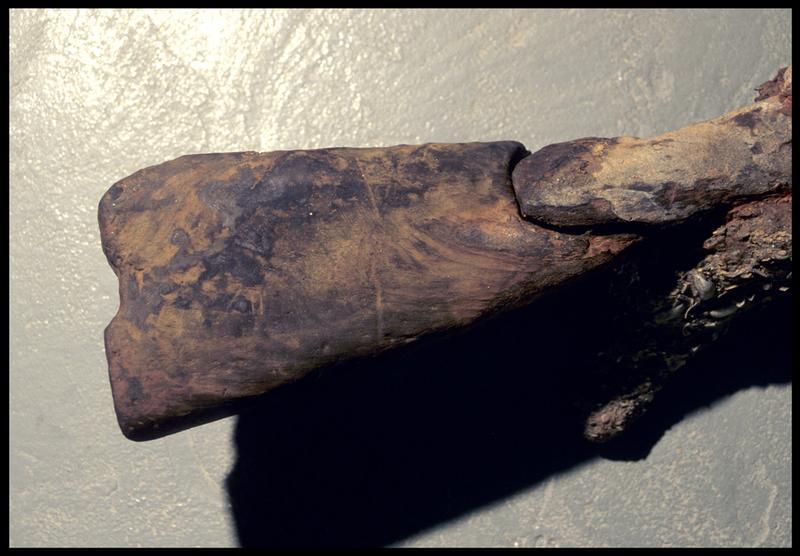 Vue de détail de la crosse en bois d'un fusil (fouille M. L'Hour/Drassm, E. Veyrat/Drassm).