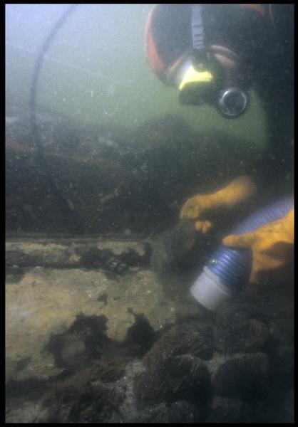 Vue sous-marine d'un plongeur dévasant à la suceuse à eau un cordage (fouille M. L'Hour/Drassm, E. Veyrat/Drassm).