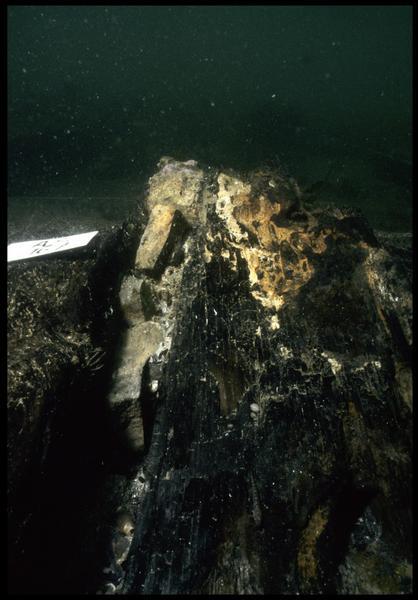 Vue sous-marine de fragments de céramique in situ (fouille M. L'Hour/Drassm, E. Veyrat/Drassm).