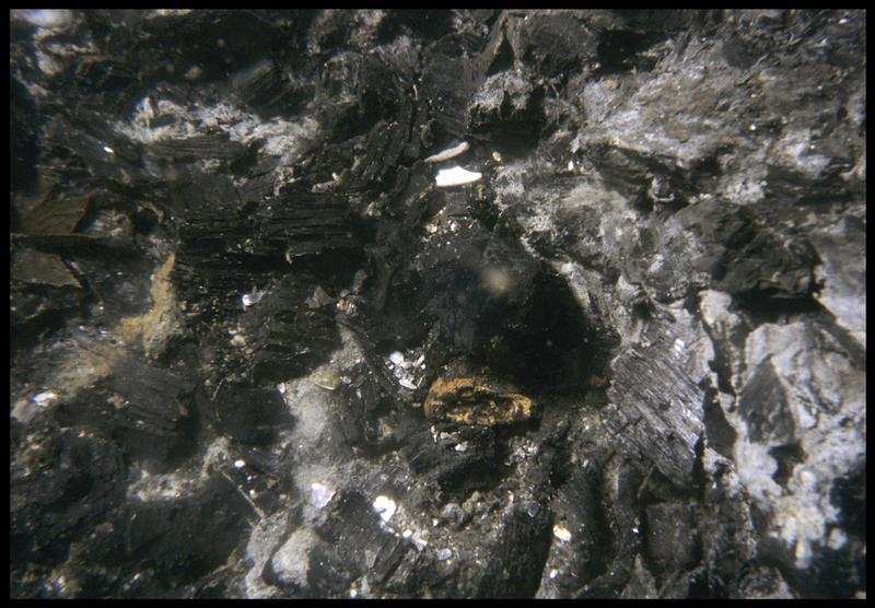 Vue sous-marine de fragments de charbon de bois in situ (fouille M. L'Hour/Drassm, E. Veyrat/Drassm).