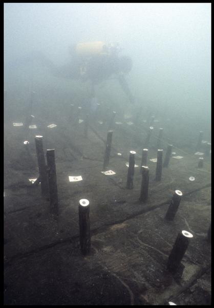 Vue sous-marine de détail des gournables des membrures de la carène avec un plongeur (fouille M. L'Hour/Drassm, E. Veyrat/Drassm).