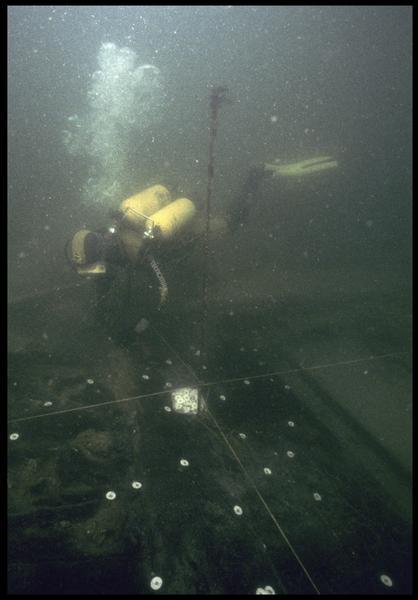 Vue sous-marine d'un plongeur marquant les gournables des membrures (fouille M. L'Hour/Drassm, E. Veyrat/Drassm).