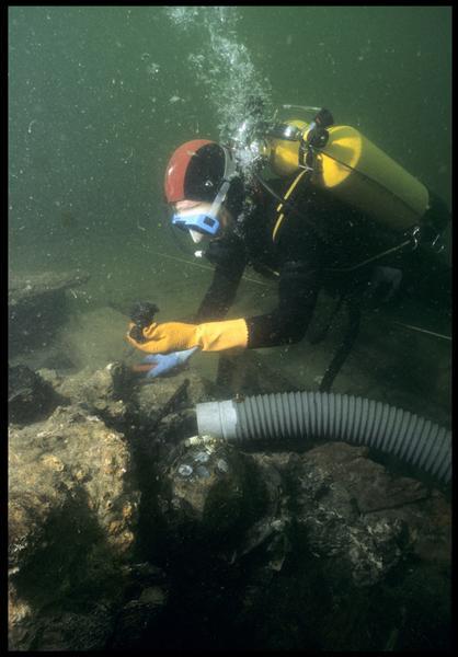 Vue sous-marine d'un plongeur observant un élément dégagé de la concrétion métallique (fouille M. L'Hour/Drassm, E. Veyrat/Drassm).