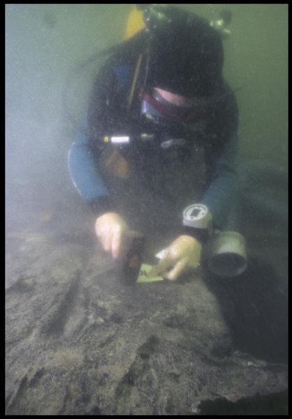 Vue sous-marine d'un plongeur effectuant le marquage de la carène (fouille M. L'Hour/Drassm, E. Veyrat/Drassm).