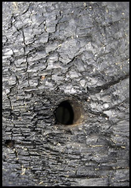 Vue de détail du trou de cheville dans une membrure (fouille M. L'Hour/Drassm, E. Veyrat/Drassm).