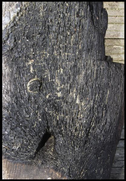 Vue de détail d'une membrure et de son chevillage (fouille M. L'Hour/Drassm, E. Veyrat/Drassm).