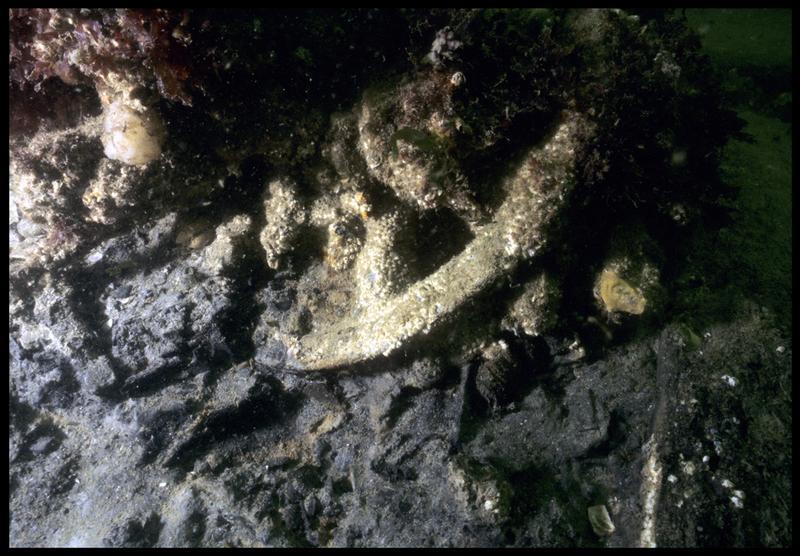 Vue sous-marine d'une concrétion métallique avec une roue (fouille M. L'Hour/Drassm, E. Veyrat/Drassm).
