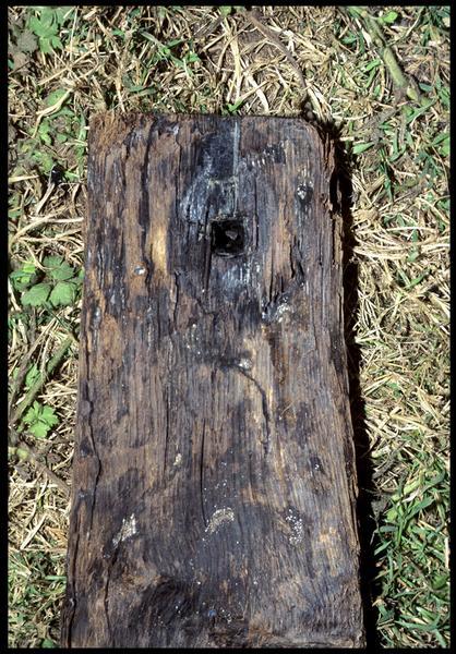 Vue de détail d'une pièce de bois de la carène (fouille M. L'Hour/Drassm, E. Veyrat/Drassm).