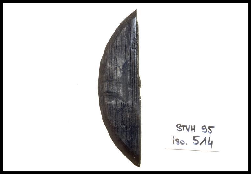 Vue d'un fragment de fond de tonneau de bois (fouille M. L'Hour/Drassm, E. Veyrat/Drassm).