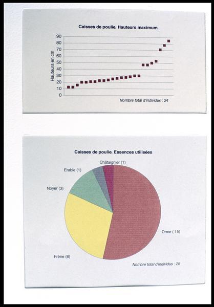 Vue des schémas de hauteur et d'identification des essences des poulies (fouille M. L'Hour/Drassm, E. Veyrat/Drassm).