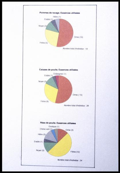 Vue des schémas de hauteur et d'identification des essences des poulies, réas et pommes de racage (fouille M. L'Hour/Drassm, E. Veyrat/Drassm).