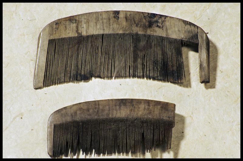 Vue de deux peignes en bois (fouille M. L'Hour/Drassm, E. Veyrat/Drassm).