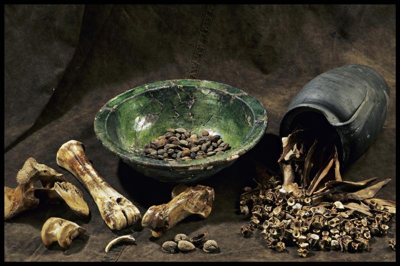 Vue d'un saladier à vernis vert et d'un pichet avec des ossements, de arêtes de poisson et de fruits à coques (fouille M. L'Hour/Drassm, E. Veyrat/Drassm).