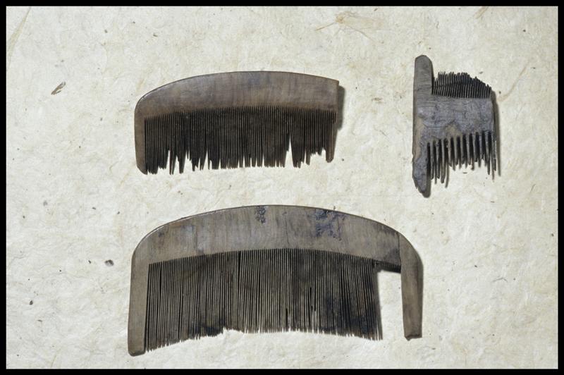 Vue de trois peignes de bois (fouille M. L'Hour/Drassm, E. Veyrat/Drassm).