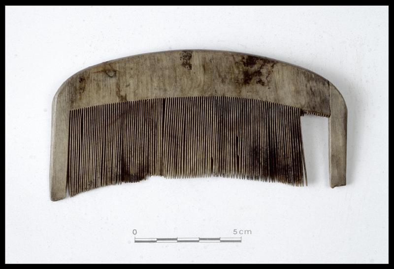 Vue d'un peigne de bois (fouille M. L'Hour/Drassm, E. Veyrat/Drassm).