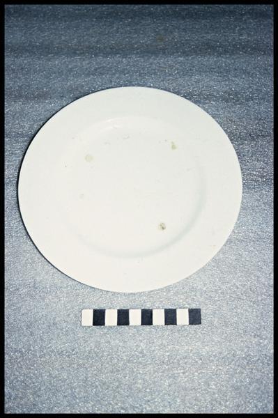 Vue d'une assiette de faïence (fouille G. Watts).