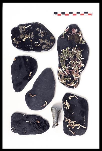 Vue de pierres de lest (fouille M. L'Hour/Drassm).