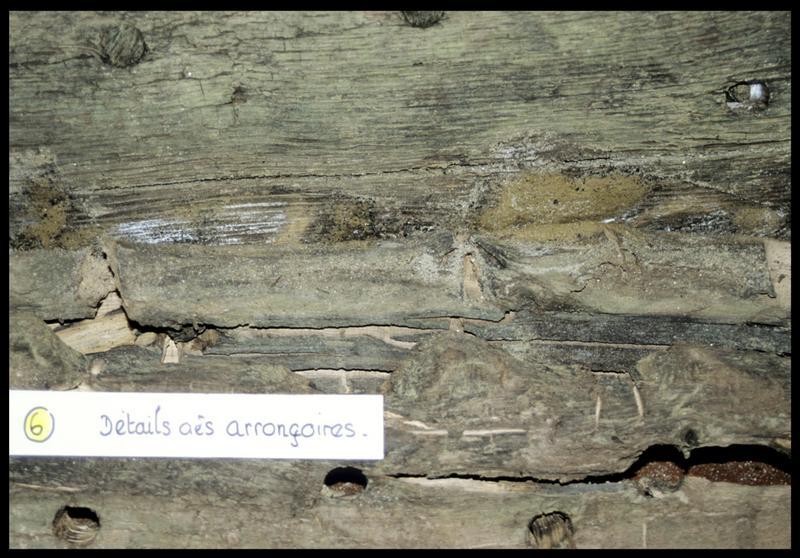 Vue de détail du bois des arronçoires (fouille CNRAS).