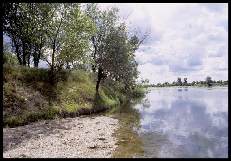 Vue de la rive de la Loire (fouille CNRAS).