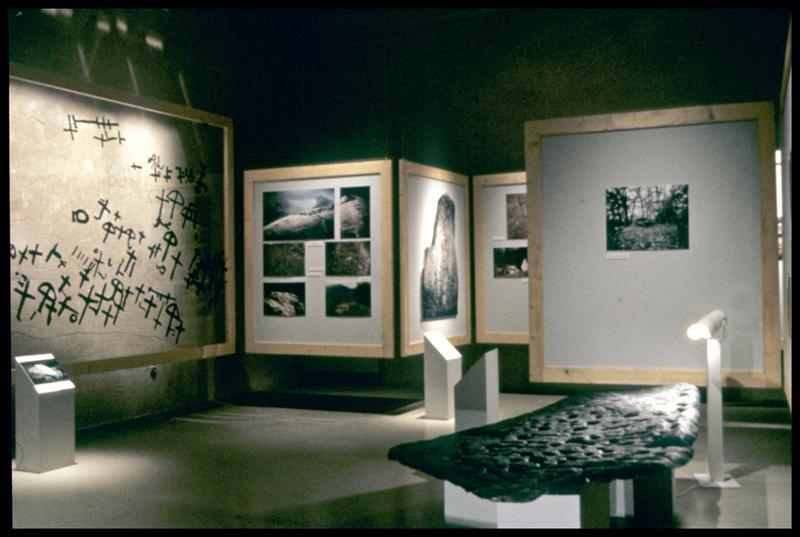 Vue de l'exposition de photo et moulage des sites (fouille Musée Savoisien).
