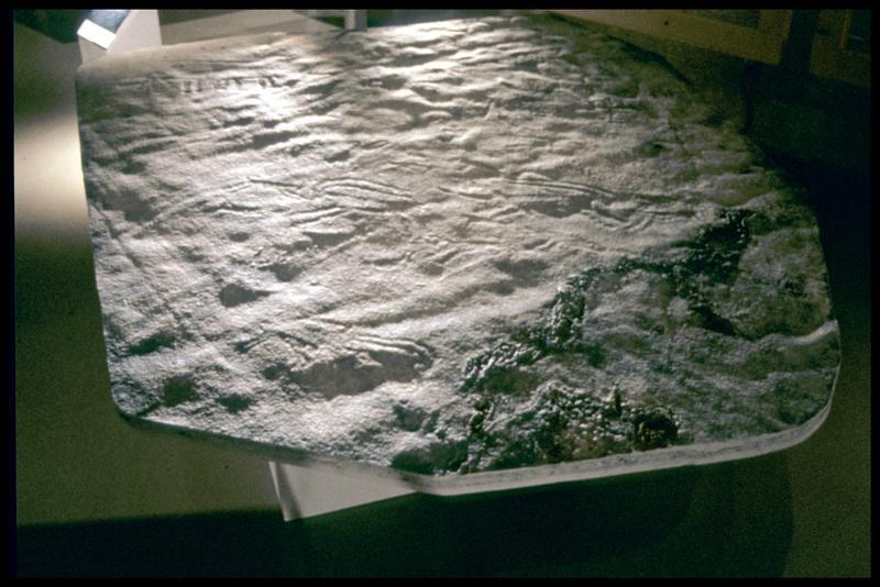 Vue du moulage de Aussois lors de l'exposition (fouille Musée Savoisien).