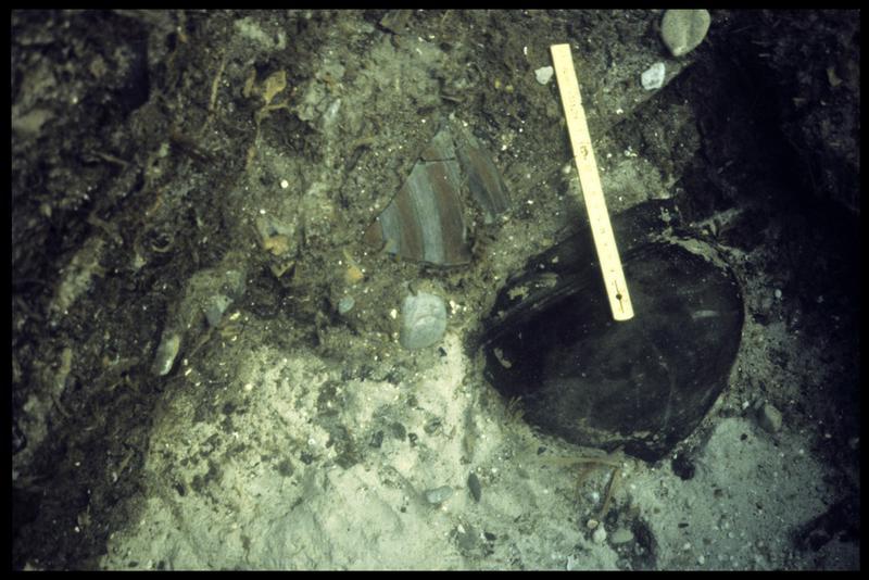 Vue sous-marine d'un vase et d'un fragment de céramique peinte in situ (fouille A. Marguet/Drassm).