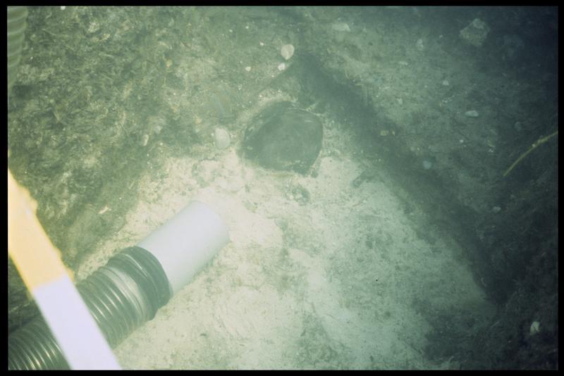 Vue sous-marine du dévasage à la suceuse à eau de céramiques (fouille A. Marguet/Drassm).
