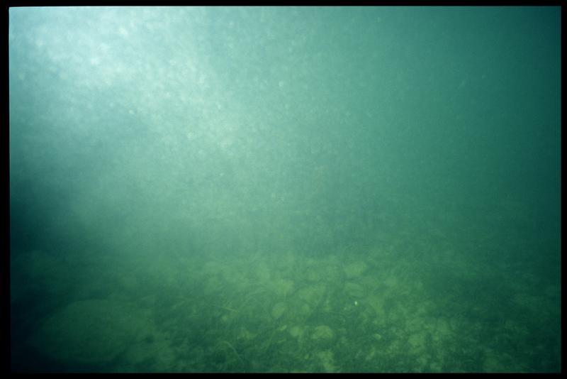 Vue sous-marine de la palissade de bois (fouille A. Marguet/Drassm).
