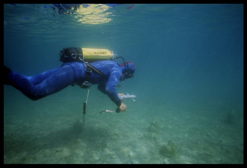 Vue sous-marine d'un plongeur transportant le carottier (fouille A. Marguet/Drassm).