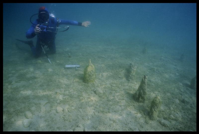 Vue sous-marine d'un plongeur photographiant les pieux in situ (fouille A. Marguet/Drassm).