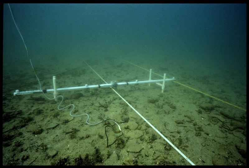 Vue sous-marine de la barre de mesure du sondeur à sédiment (fouille A. Marguet/Drassm).