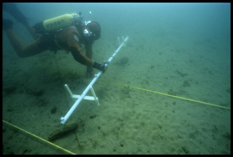 Vue sous-marine d'un plongeur et de la barre de mesure du sondeur à sédiment (fouille A. Marguet/Drassm).