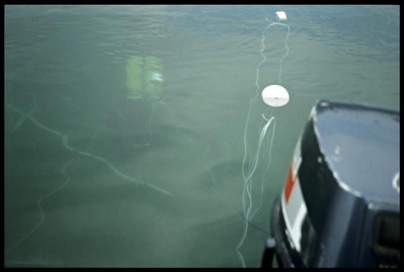 Vue de la surface d'un plongeur manipulant la barre de mesure du sondeur à sédiment (fouille A. Marguet/Drassm).