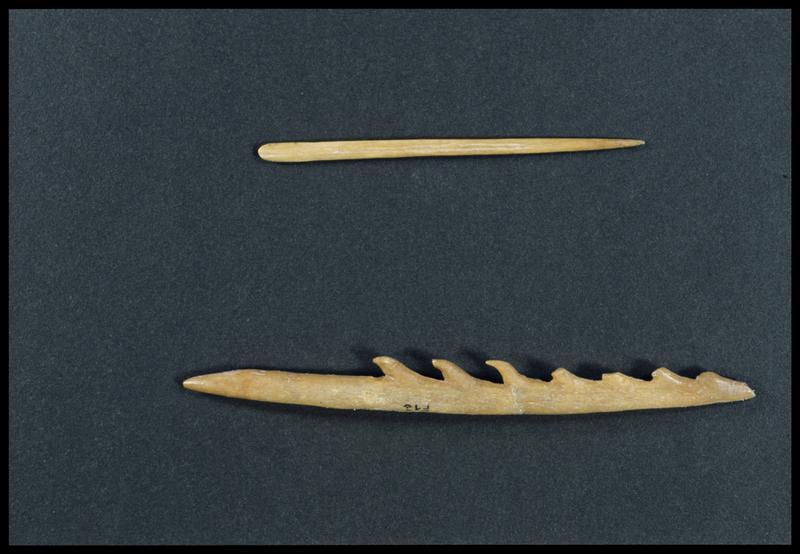 Vue d'une aiguille et d'un harpon en os (CNRAS).