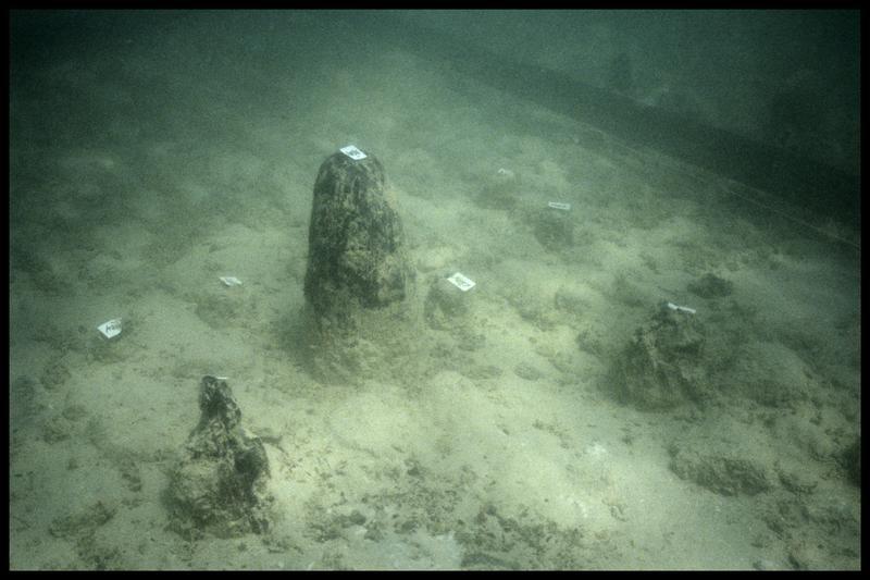 Vue sous-marine de plusieurs pieux de bois in situ (fouille A. Marguet/Drassm).