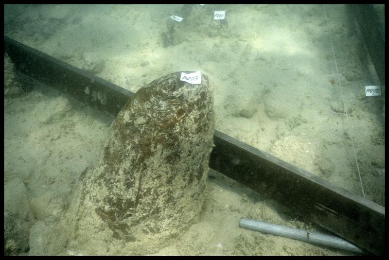 Vue sous-marine du pieu de bois 209 (fouille A. Marguet/Drassm).