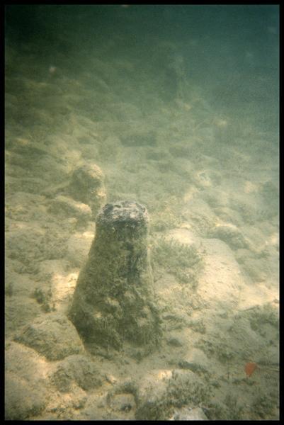 Vue sous-marine de deux pieux in situ (fouille A. Marguet/Drassm).
