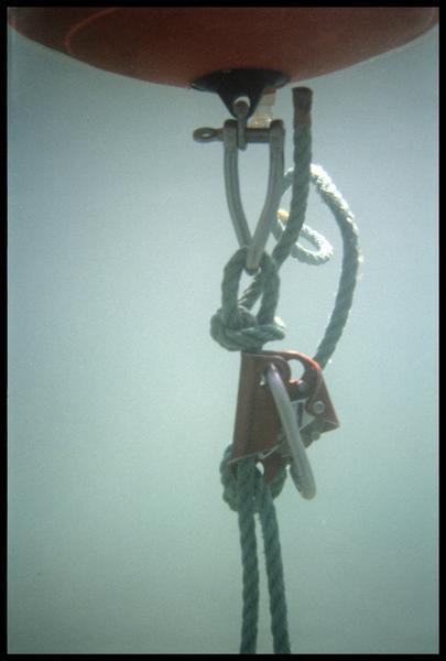 Vue sous-marine du système de tension des bouts d'une balise (fouille A. Marguet/Drassm).