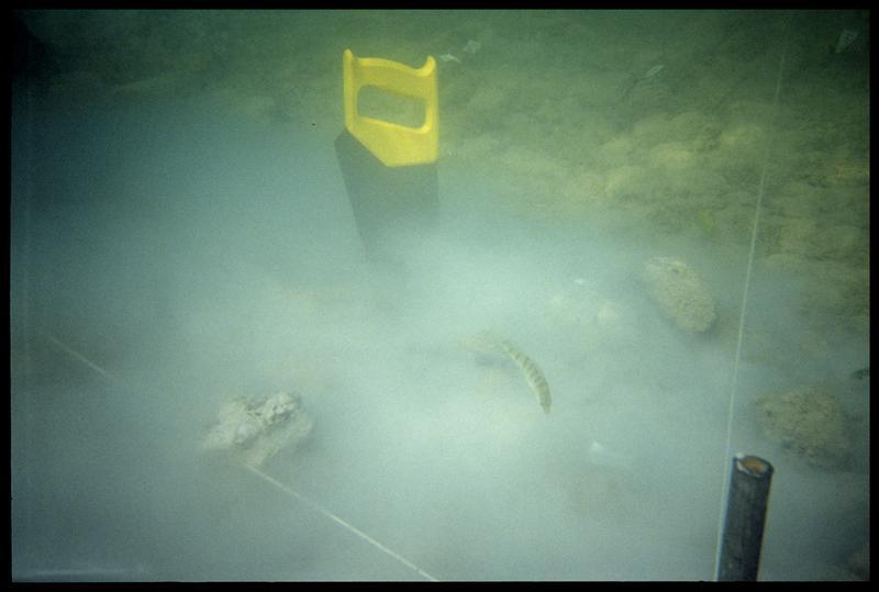 Vue sous-marine de la scie de découpe des pieux de bois (fouille A. Marguet/Drassm).