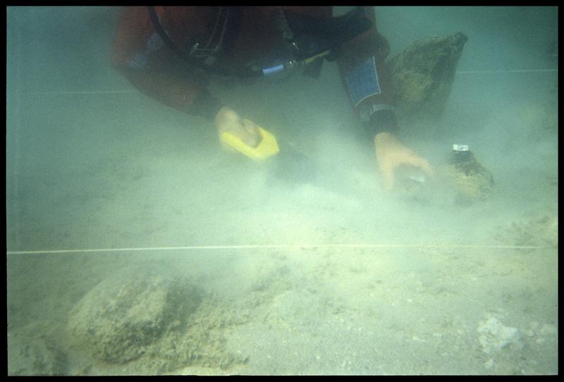 Vue sous-marine d'un plongeur sciant un pieu de bois (fouille A. Marguet/Drassm).