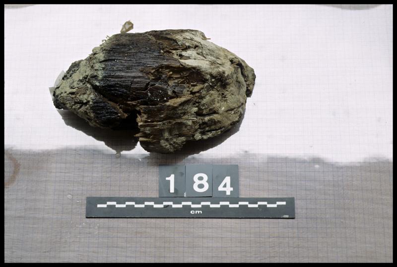 Vue du pieu de bois 184 (fouille A. Marguet/Drassm).