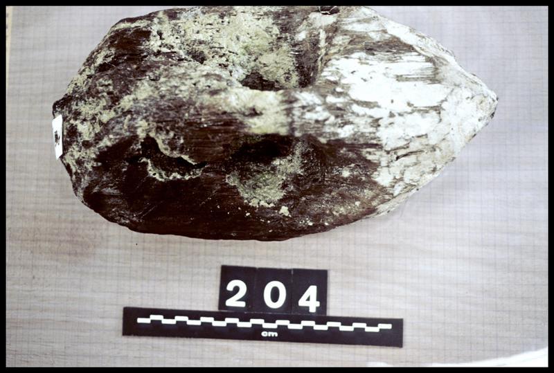 Vue du pieu de bois 204 (fouille A. Marguet/Drassm).