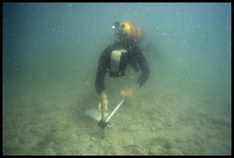 Vue sous-marine d'un plongeur effectuant la topographie du site (fouille A. Marguet/Drassm).