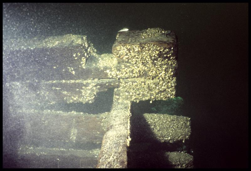 Vue sous-marine des bois du flanc de la carène (fouille E. Rieth).