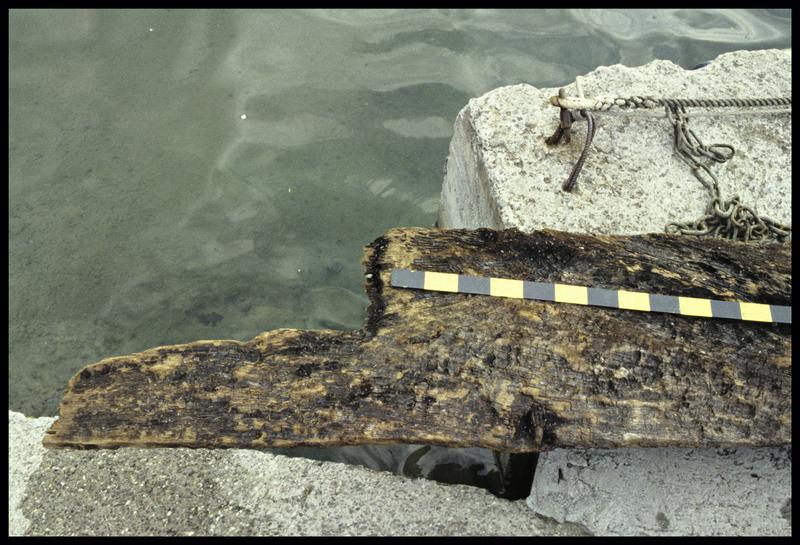 Vue de détail d'une planche de bois de la carène (fouille E. Rieth).