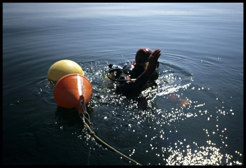 Vue d'un plongeur et de la balise du site (fouille E. Rieth).